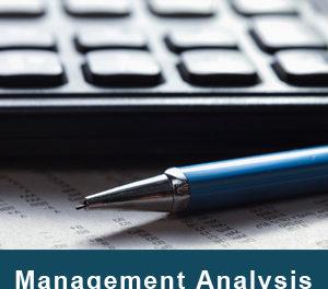 Бизнес-практикум «Организационно-управленческий анализ работы компании»